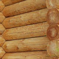 Применение лиственницы в строительстве