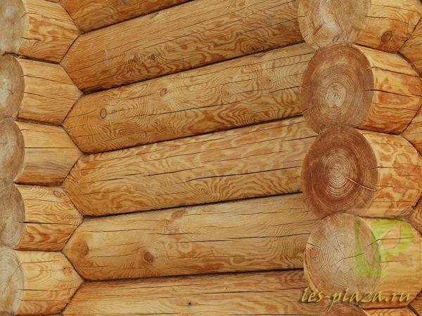 Применение лиственницы в строительстве-1